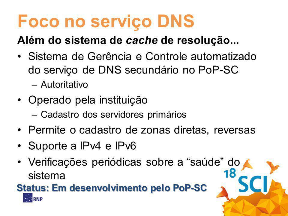Foco no serviço DNS Além do sistema de cache de resolução...