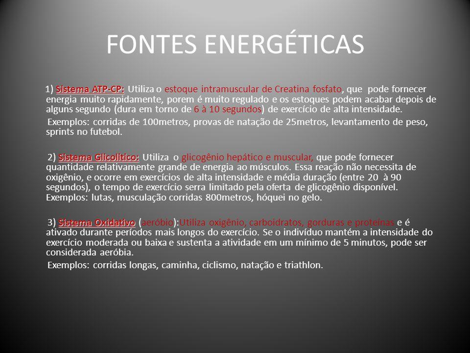 FONTES ENERGÉTICAS