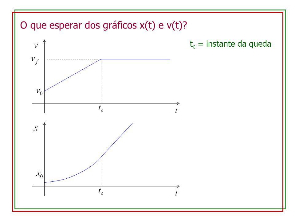 O que esperar dos gráficos x(t) e v(t)