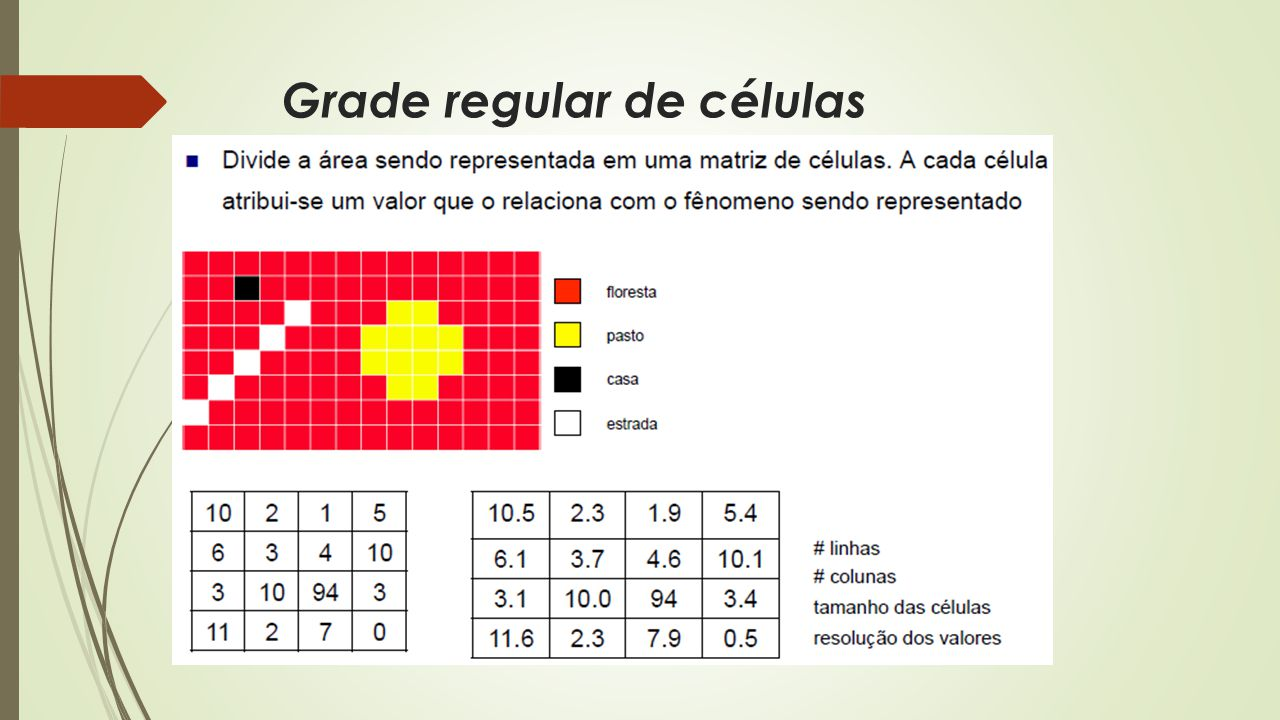 Grade regular de células