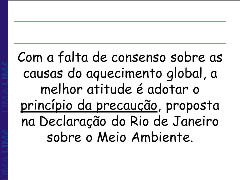 Com a falta de consenso sobre as causas do aquecimento global, a melhor atitude é adotar o princípio da precaução, proposta na Declaração do Rio de Janeiro sobre o Meio Ambiente.