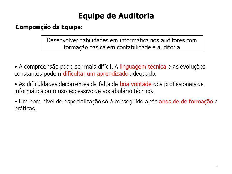 Equipe de Auditoria Composição da Equipe: