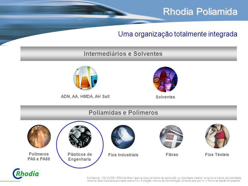 Poliamidas e Polímeros Intermediários e Solventes
