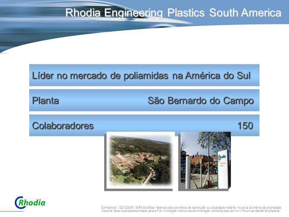 Rhodia Engineering Plastics South America