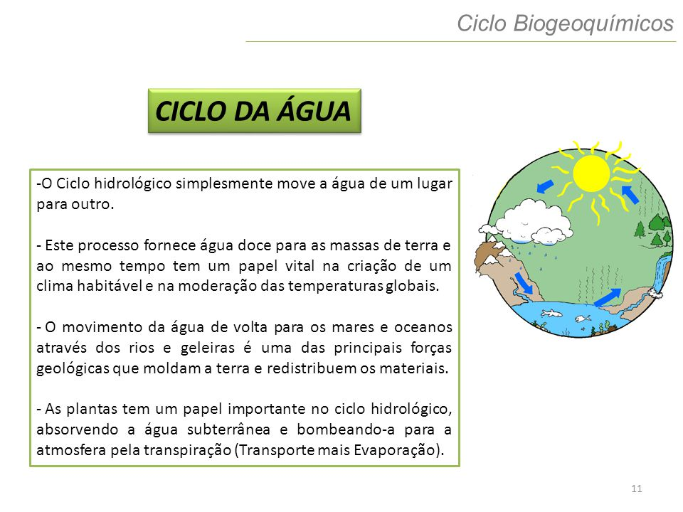 CICLO DA ÁGUA Ciclo Biogeoquímicos