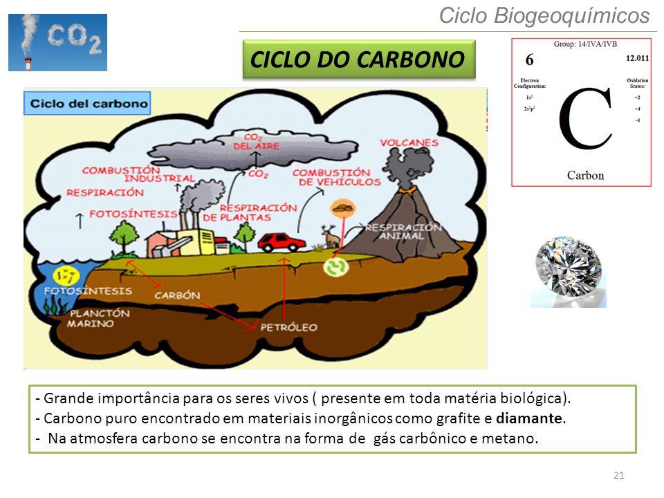 CICLO DO CARBONO Ciclo Biogeoquímicos