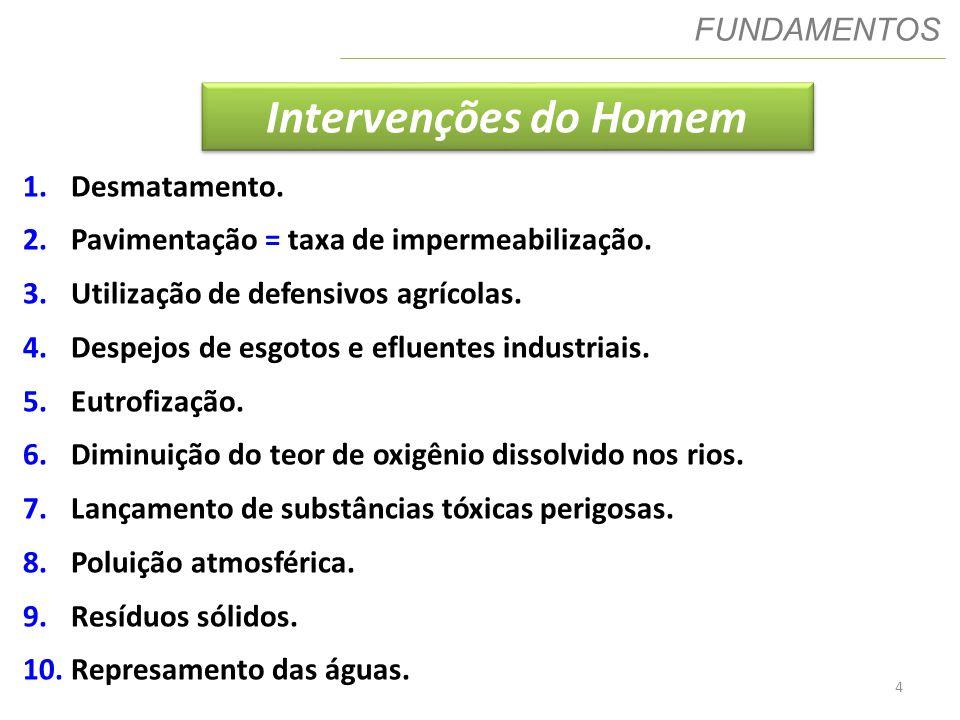 Intervenções do Homem FUNDAMENTOS Desmatamento.