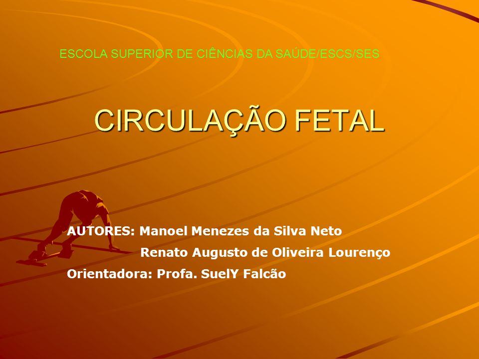 CIRCULAÇÃO FETAL ESCOLA SUPERIOR DE CIÊNCIAS DA SAÚDE/ESCS/SES