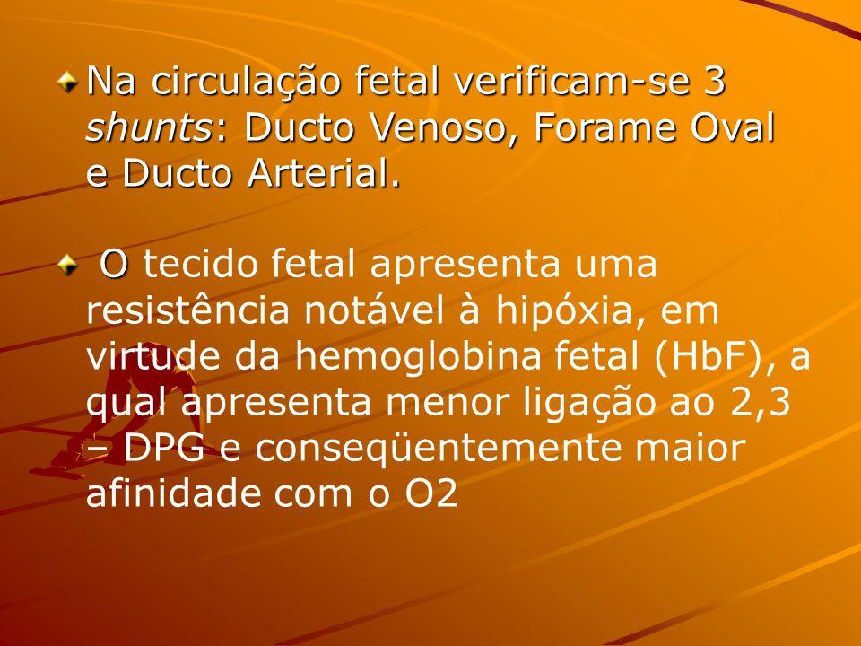 Na circulação fetal verificam-se 3 shunts: Ducto Venoso, Forame Oval e Ducto Arterial.
