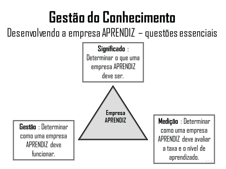 Gestão do Conhecimento Desenvolvendo a empresa APRENDIZ – questões essenciais