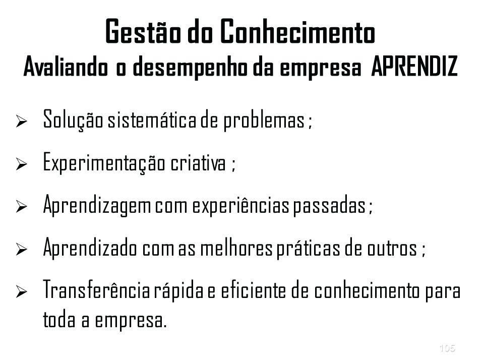 Gestão do Conhecimento Avaliando o desempenho da empresa APRENDIZ