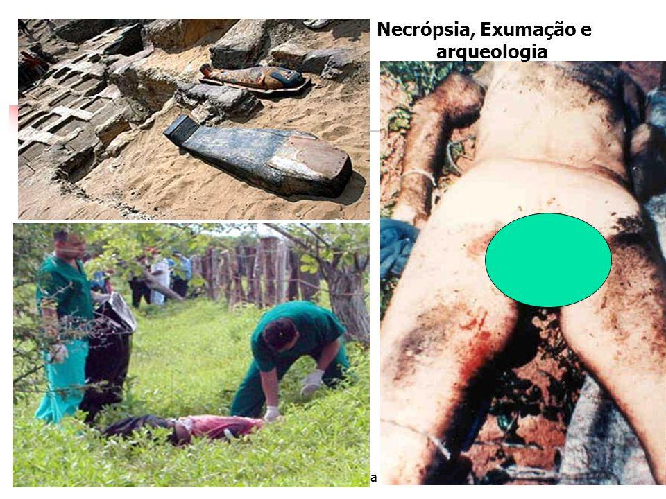 Necrópsia, Exumação e arqueologia Dra Nadja Ferreira