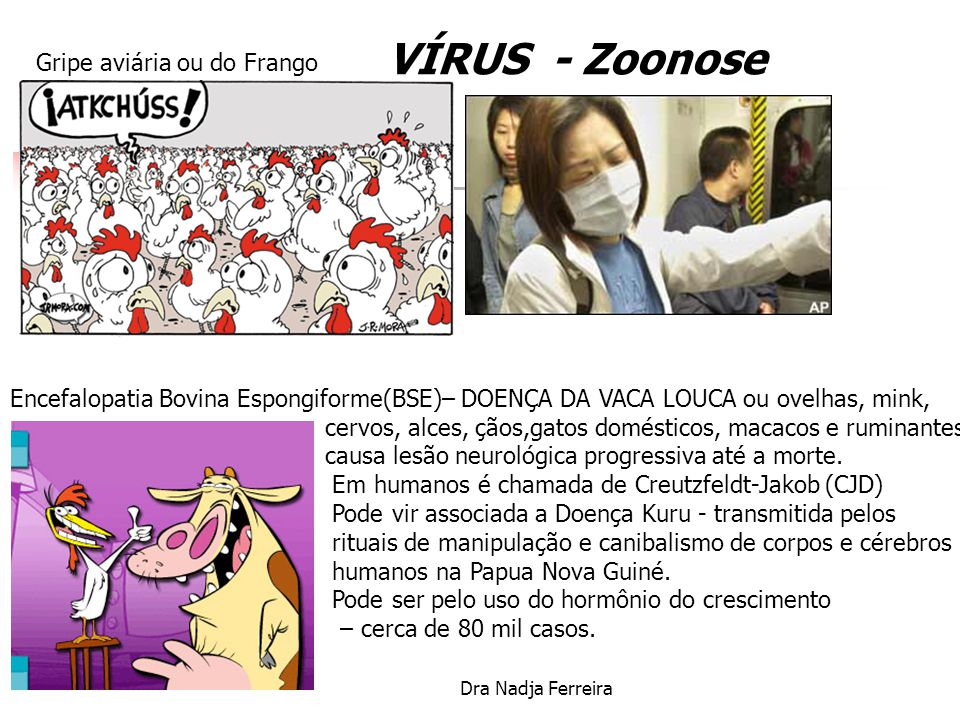 VÍRUS - Zoonose Gripe aviária ou do Frango