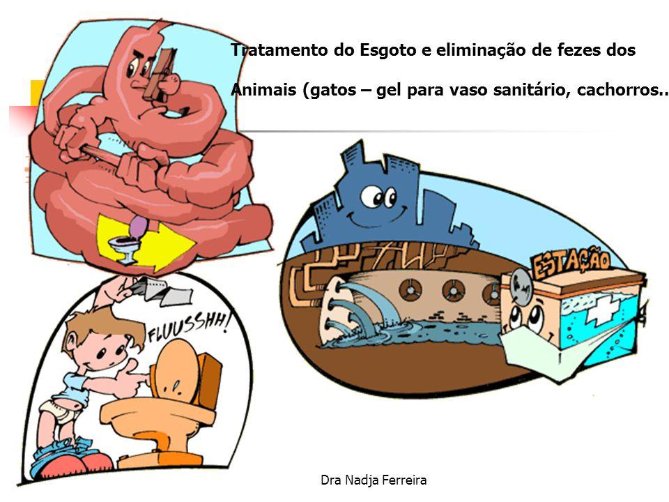 Tratamento do Esgoto e eliminação de fezes dos