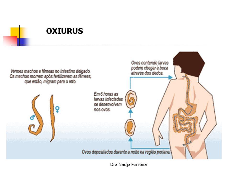 OXIURUS Dra Nadja Ferreira