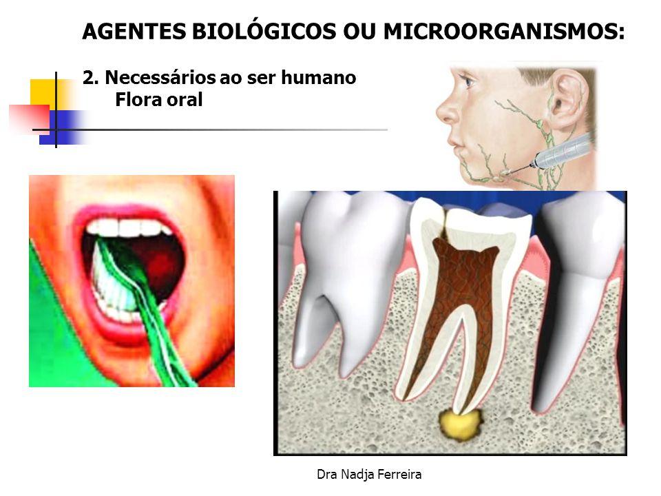 AGENTES BIOLÓGICOS OU MICROORGANISMOS: