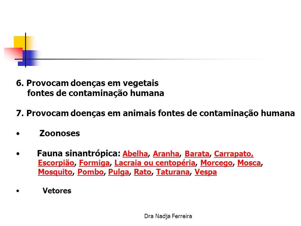 6. Provocam doenças em vegetais fontes de contaminação humana