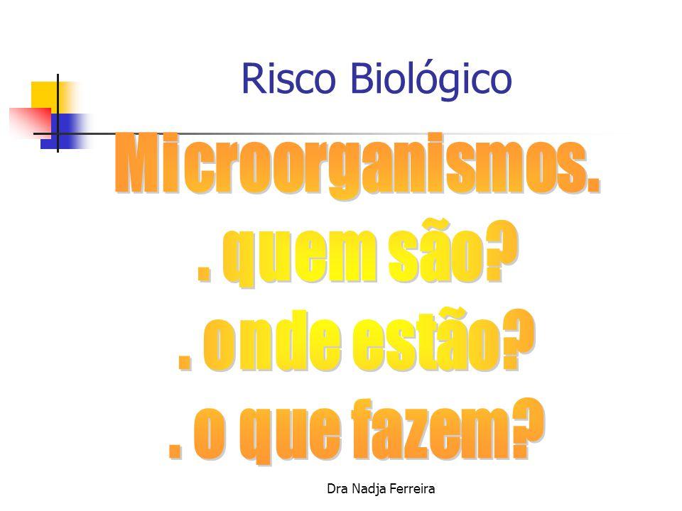 Risco Biológico Microorganismos. . quem são . onde estão
