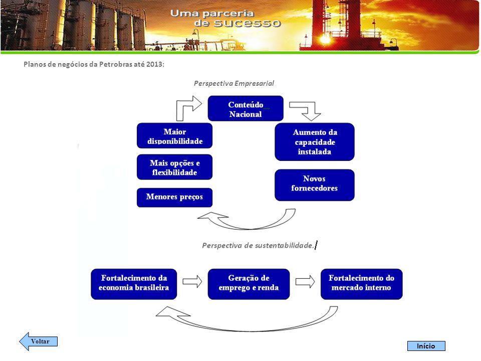 Planos de negócios da Petrobras até 2013: