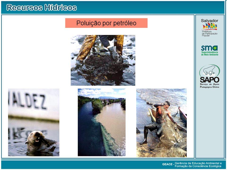 Poluição por Petróleo Poluição por petróleo