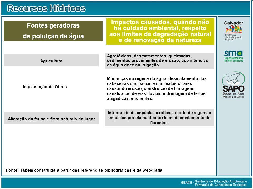 Fontes geradoras de poluição da água (cont.)