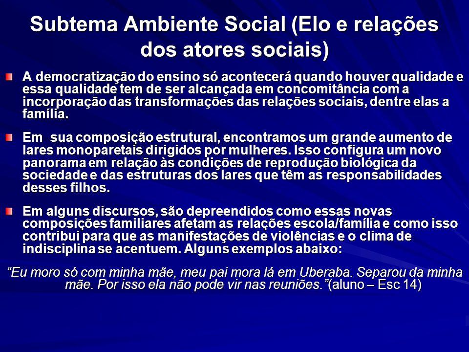 Subtema Ambiente Social (Elo e relações dos atores sociais)