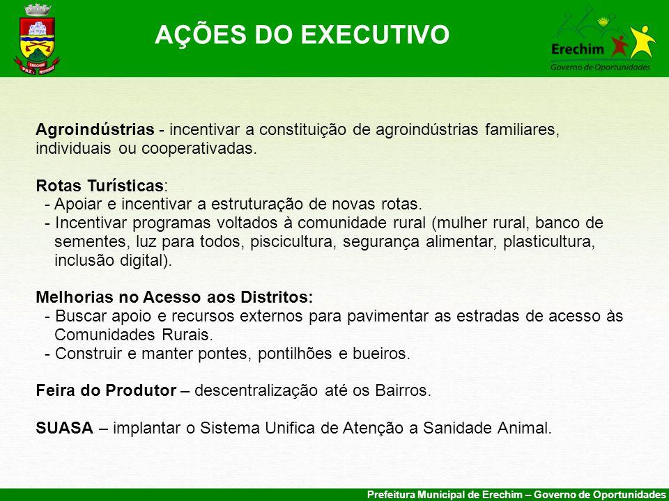 AÇÕES DO EXECUTIVO Agroindústrias - incentivar a constituição de agroindústrias familiares, individuais ou cooperativadas.