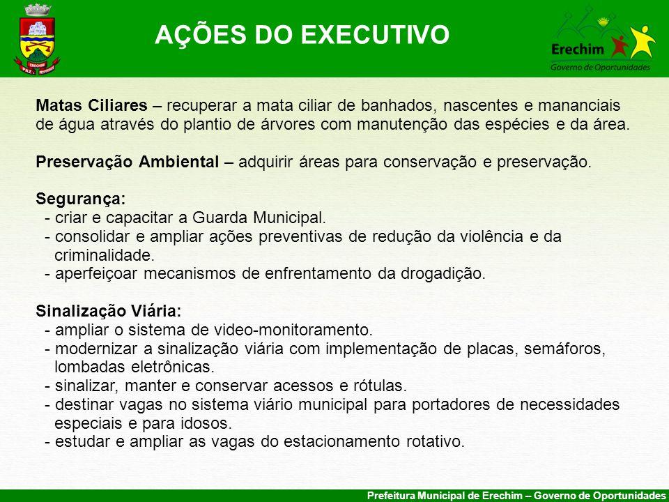 AÇÕES DO EXECUTIVO