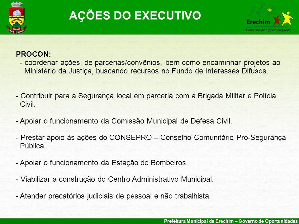 AÇÕES DO EXECUTIVO PROCON: