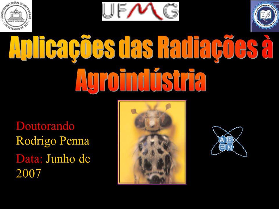 Doutorando Rodrigo Penna Data: Junho de 2007
