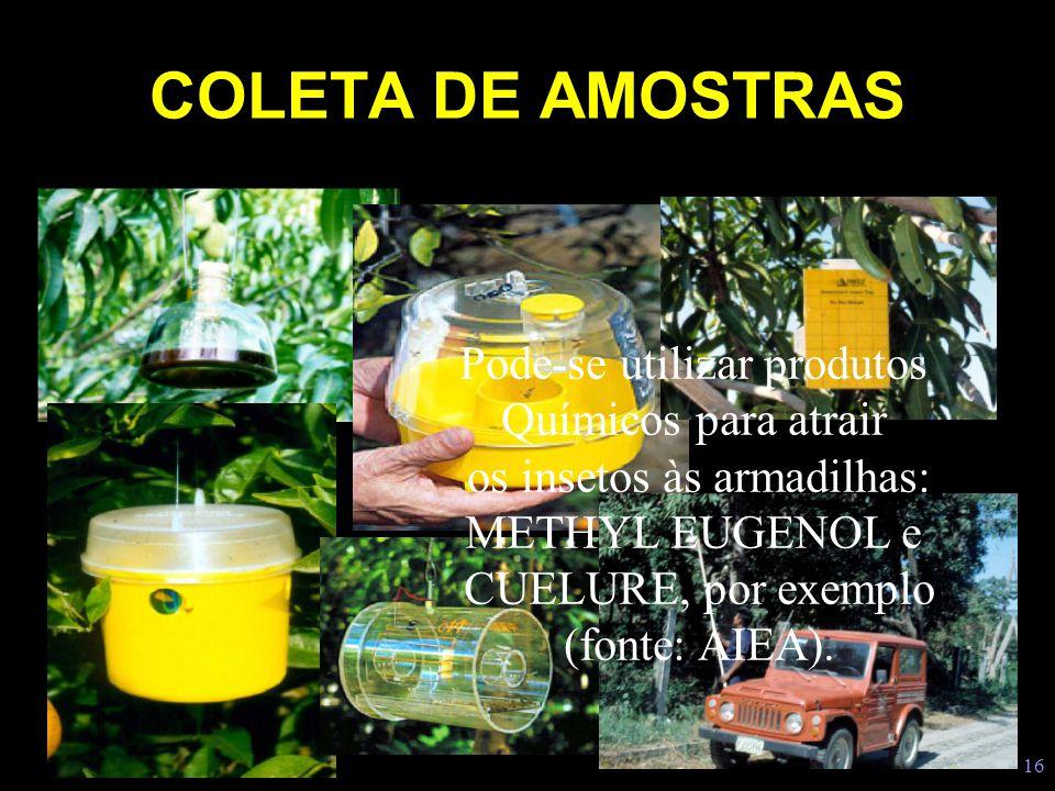 COLETA DE AMOSTRAS Pode-se utilizar produtos Químicos para atrair