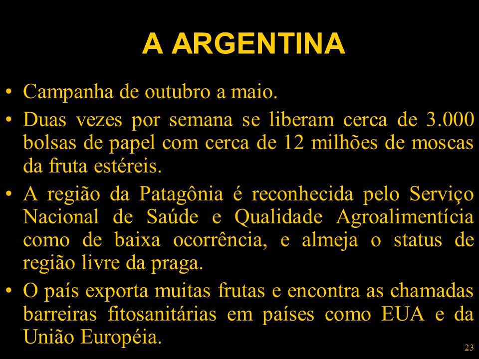 A ARGENTINA Campanha de outubro a maio.