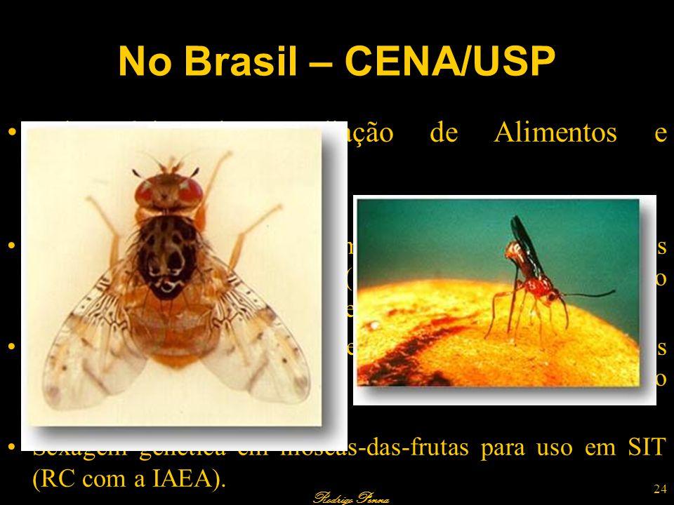 No Brasil – CENA/USP Laboratório de Irradiação de Alimentos e Radioentomologia. Pesquisas em andamento.