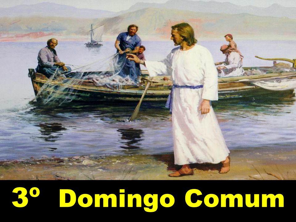 3º Domingo Comum
