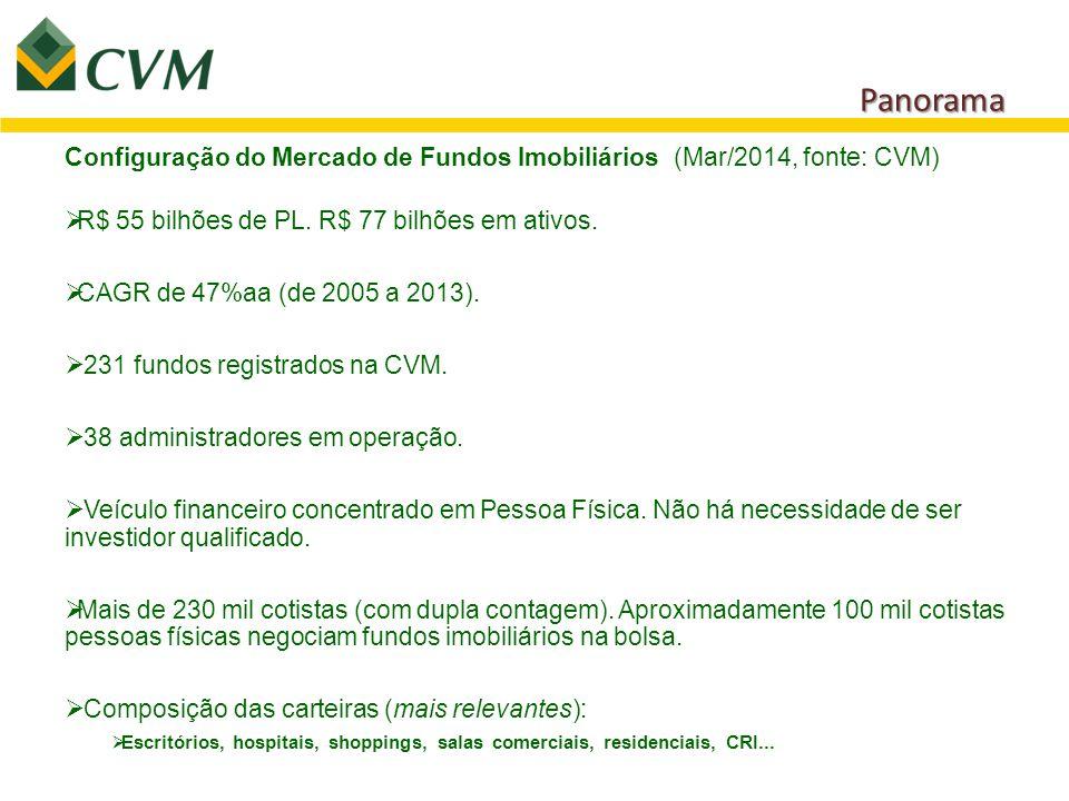 Panorama Configuração do Mercado de Fundos Imobiliários (Mar/2014, fonte: CVM) R$ 55 bilhões de PL. R$ 77 bilhões em ativos.