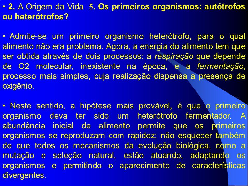 2. A Origem da Vida 5. Os primeiros organismos: autótrofos ou heterótrofos