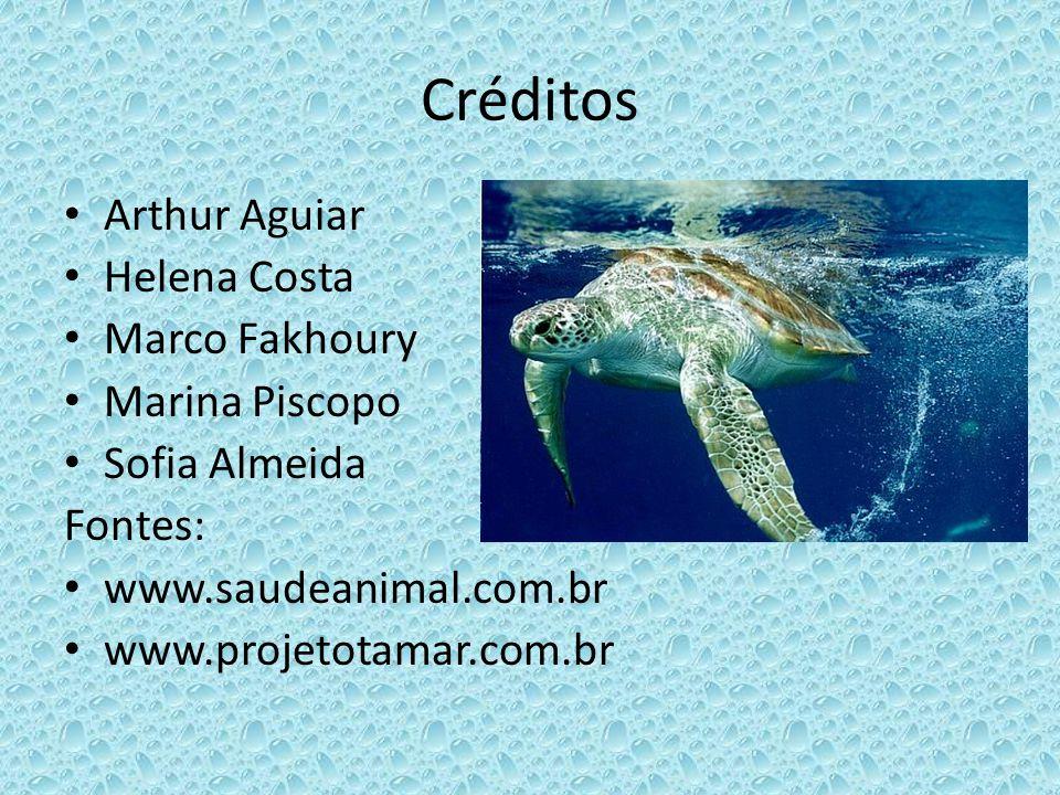 Créditos Arthur Aguiar Helena Costa Marco Fakhoury Marina Piscopo