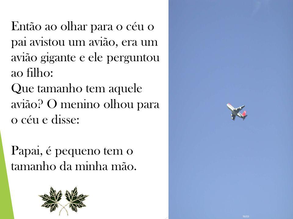 Então ao olhar para o céu o pai avistou um avião, era um avião gigante e ele perguntou ao filho: