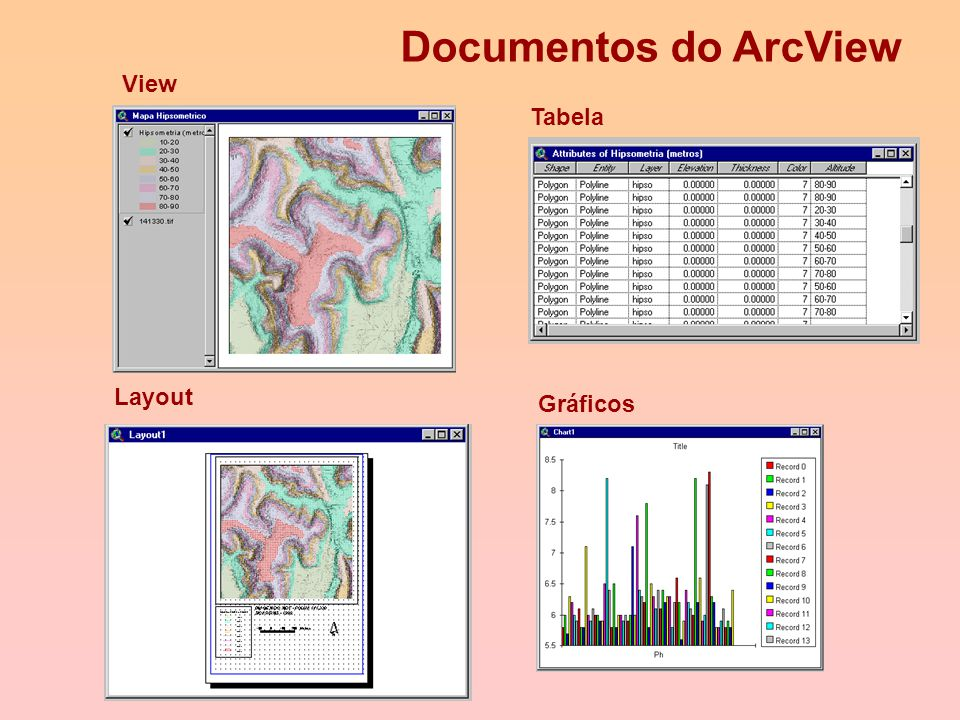 Documentos do ArcView View Tabela Layout Gráficos