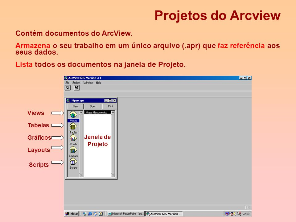 Projetos do Arcview Contém documentos do ArcView.