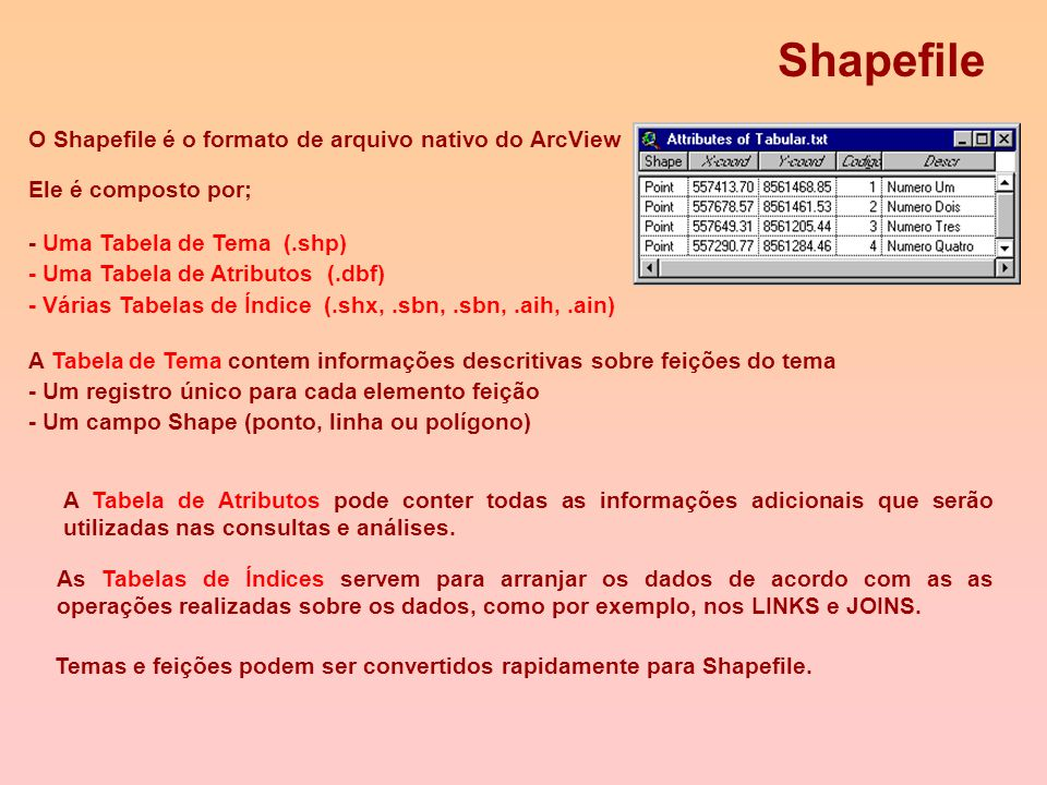 Shapefile O Shapefile é o formato de arquivo nativo do ArcView