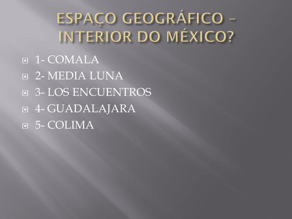 ESPAÇO GEOGRÁFICO – INTERIOR DO MÉXICO