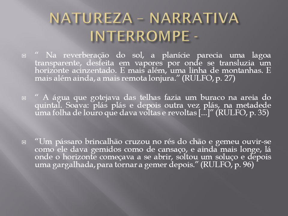 NATUREZA – NARRATIVA INTERROMPE -