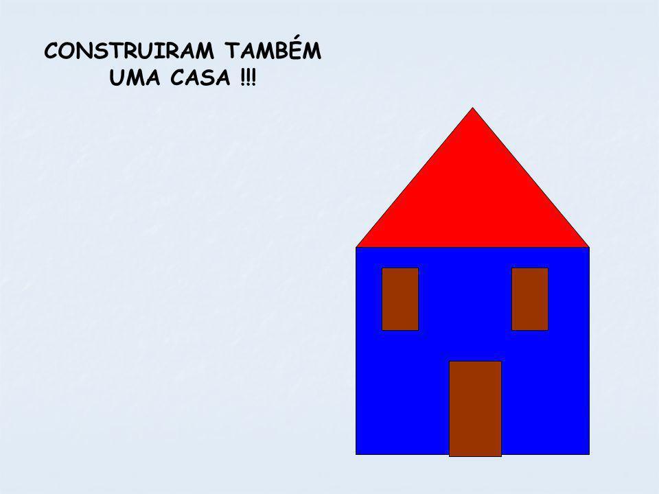 CONSTRUIRAM TAMBÉM UMA CASA !!!
