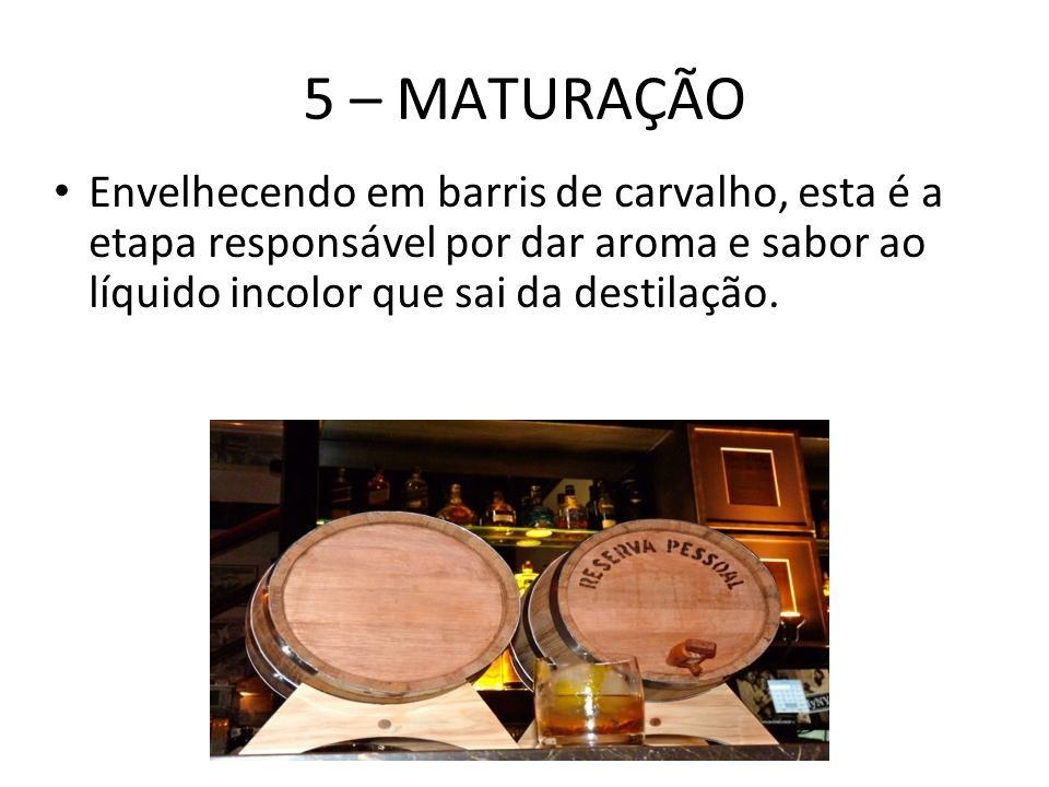 5 – MATURAÇÃO Envelhecendo em barris de carvalho, esta é a etapa responsável por dar aroma e sabor ao líquido incolor que sai da destilação.