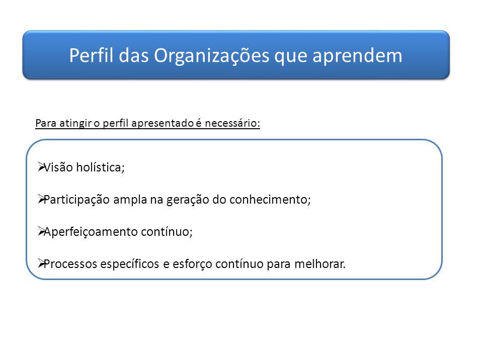 Perfil das Organizações que aprendem