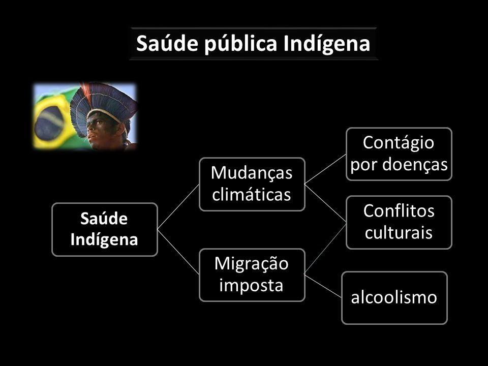 Saúde pública Indígena