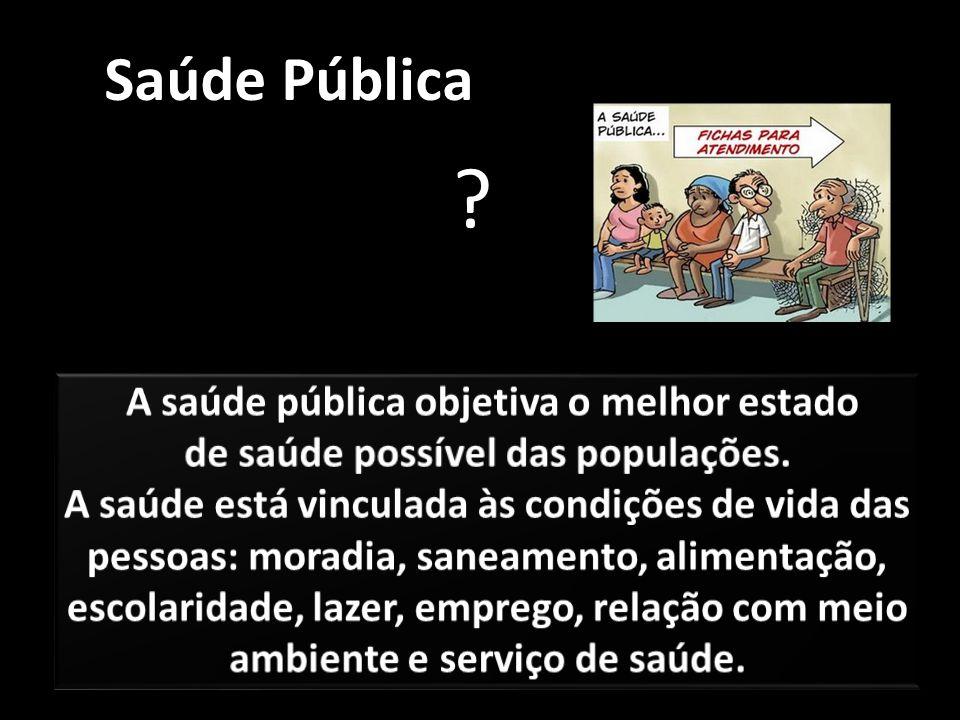 Saúde Pública A saúde pública objetiva o melhor estado