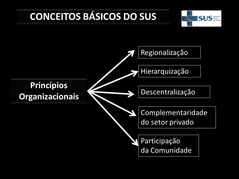 CONCEITOS BÁSICOS DO SUS