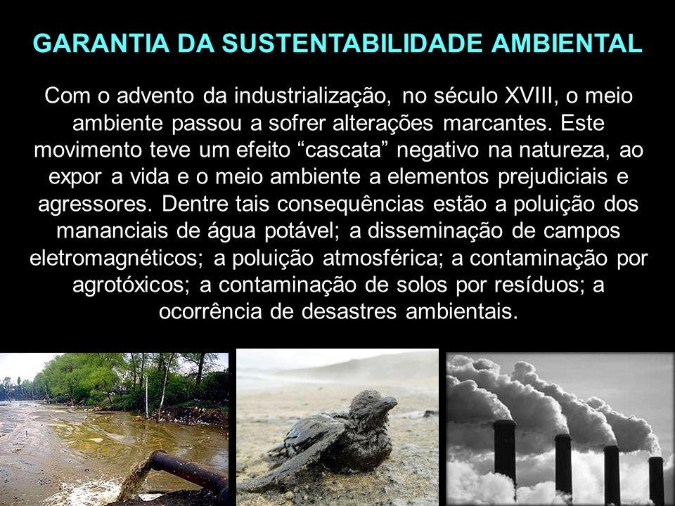 GARANTIA DA SUSTENTABILIDADE AMBIENTAL
